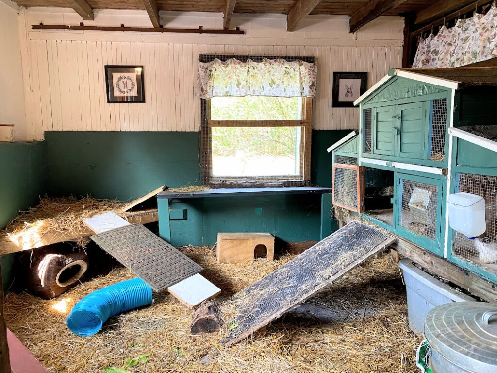 Making a Bunny Barn - Rabbit Enclosure in Barn Stall